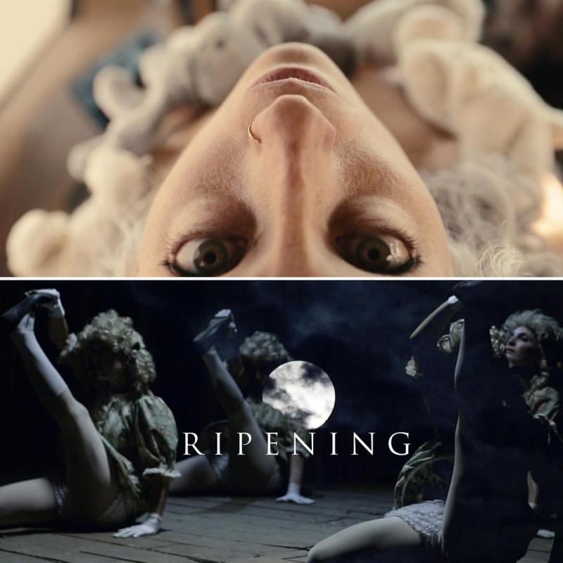 RIPENING | Robin Sokoloff | Producer | Loft227